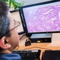 LabPON wereldwijd koploper in digitalisering werkwijze pathologisch laboratorium